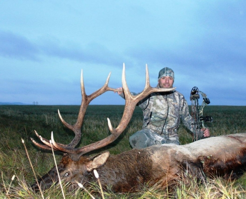 McNeice Outfitting - Elk Hunts