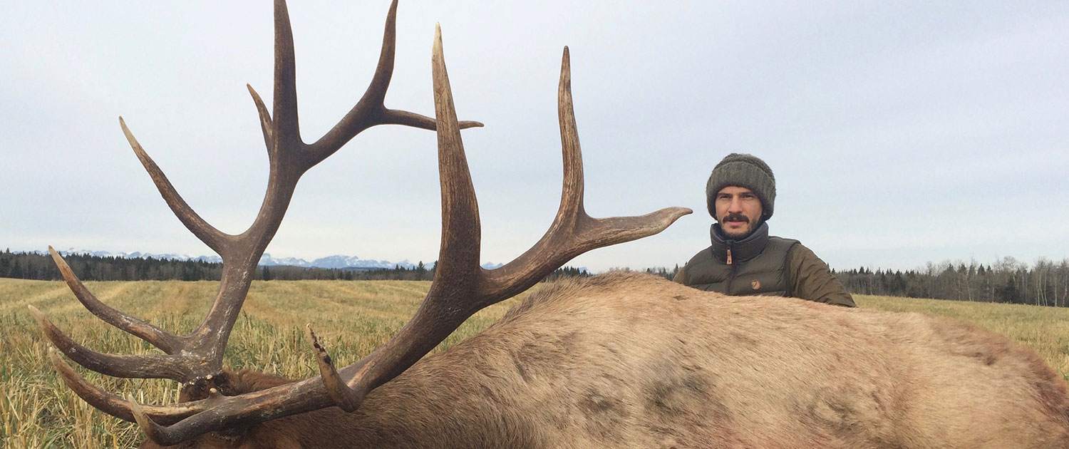 Elk Hunting at McNeice Outfitting Ltd.